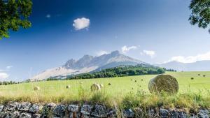 Location gîte, chambres d'hotes Camping Mon Repos dans le département Hautes alpes 5