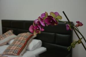 Hotel Arberia, Hotel  Tirana - big - 44