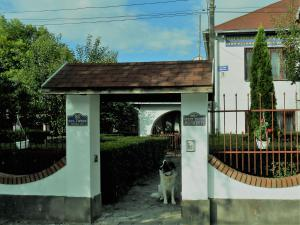 Гостевой дом Маркетти, Виноградов