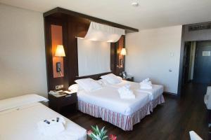 Hotel Córdoba Center (5 of 46)