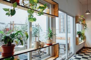 Casa Helsinki, Проживание в семье  Кордова - big - 16