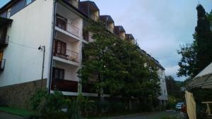 Гостевой дом Магнолия, Аше