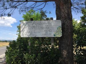 Agriturismo le madonnelle - Civitella d'Agliano