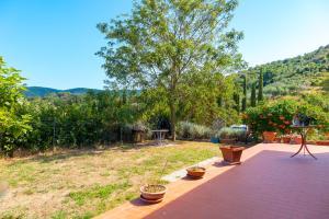 Villino Rita, Ferienwohnungen  Portoferraio - big - 9