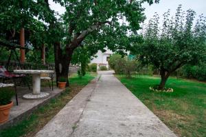 Residence Lamba, Apartmány  Radanovići - big - 5