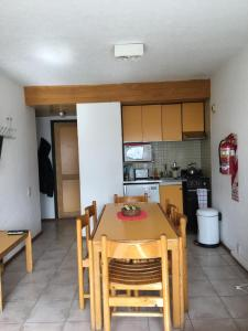 Dormy Houses Payen - Apartment - Las Leñas