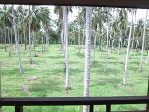 Koh Kood Paradise Beach, Üdülőtelepek  Kut-sziget - big - 64