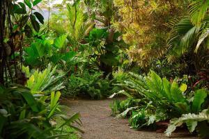 Eraeliya Villas & Gardens (13 of 26)
