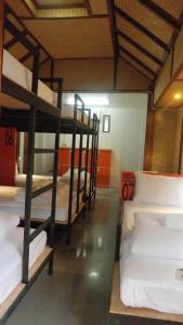 Mad Monkey Hostel Pai, Hostels  Pai - big - 30