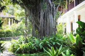 Eraeliya Villas & Gardens (25 of 26)