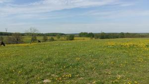 Farm stay - Dvoryaninovo
