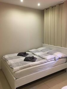 Apartamenty 66 c