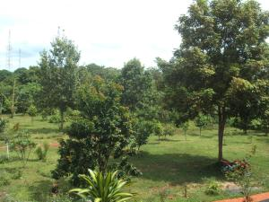 Green Plateau Lodge, Lodge  Banlung - big - 21