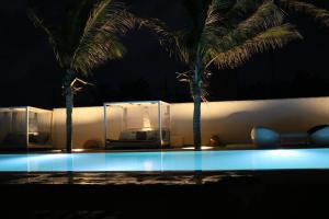 Dolphin Beach Resort (16 of 122)