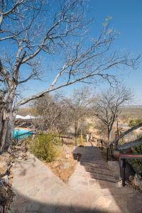 Ongava Lodge (6 of 31)