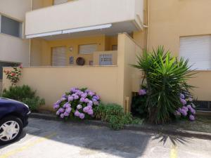 obrázek - Appartamento Del Mare