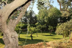 B&B Torre Di Cicala, Bed and breakfasts  Partinico - big - 18