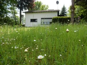 Haus am Wald - Glaadt
