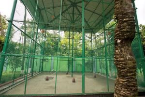 Green View Resort & Convention Center, Resort  Dhaka - big - 64
