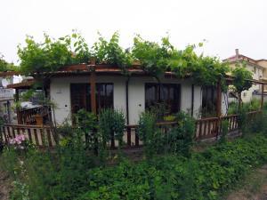 Anastasia Guest House, Prázdninové domy  Obzor - big - 1