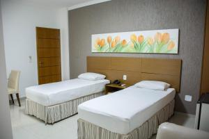 Star Hotel, Отели  Itaperuna - big - 1