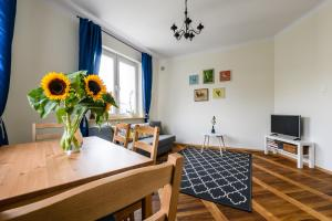Comfortable cosy Polin Apartment