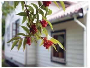 Holiday home Årdal i Ryfylke 24, Case vacanze  Årdal - big - 23