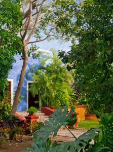 Hacienda San José (33 of 83)