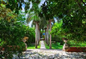 Hacienda San José (37 of 83)