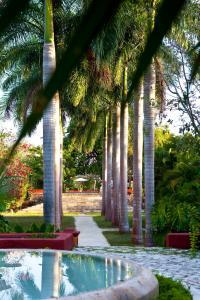 Hacienda San José (6 of 83)