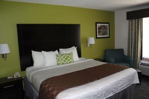 Best Western Magnolia Inn and Suites, Hotely  Ladson - big - 37