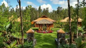 Volcano Mountain Retreat, Bed & Breakfast  Fern Acres - big - 1
