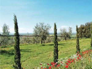 Holiday Home Casa il Colle - 01, Holiday homes  Cortona - big - 27