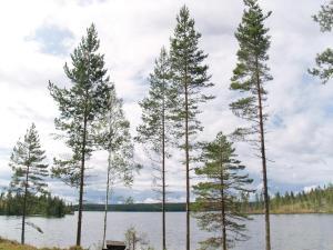 Holiday home Runnsjön Östmark, Nyaralók  Mårbacken - big - 24