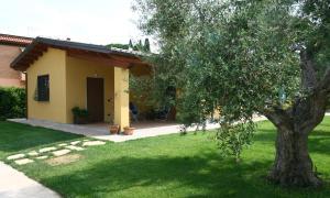 L'Antico Vigneto, Guest houses  Marino - big - 27