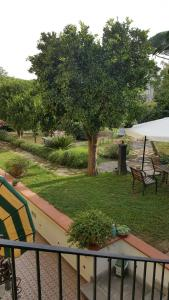 B&B Massico Apartments, Bed and Breakfasts  Sant'Agnello - big - 47