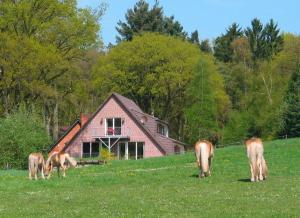 Haus Niedersachsen FeWo 8 - [#29464] - Gnarrenburg