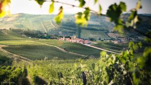 Borgo Condé (7 of 81)