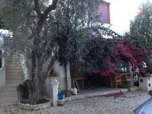 villa BISCEGLIA - AbcAlberghi.com