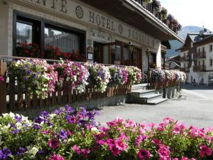 Hotel Federia - AbcAlberghi.com