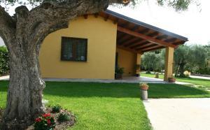 L'Antico Vigneto, Guest houses  Marino - big - 26