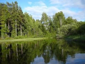 Lönneberga Hostel, Hostelek  Lönneberga - big - 51