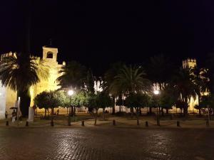 Apartamento junto a la Mezquita, Apartmány  Córdoba - big - 9