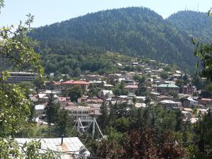 Borjomi Townhouse, Alex, Apartmány  Borjomi - big - 18