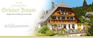 Hotel Höhengasthof Grüner Baum - Feldberg