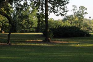 Kasztelania Pod Lipami, Agriturismi  Zakroczym - big - 37