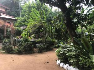 Green Garden Villa - Rattota