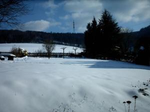 Gasthof Haus Hubertus, Penzióny  Winterberg - big - 18