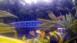 Green View Resort & Convention Center, Курортные отели  Дакка - big - 87