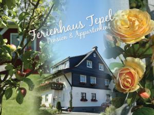 Ferienhaus Tepel - Hotel - Winterberg